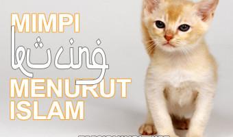 Mimpi Kucing Menurut Islam
